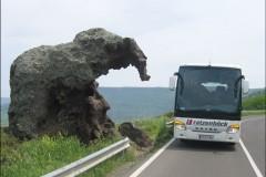 Bild7-Elefant-von-Castelsardo