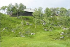 Bild1-Tundralandschaft