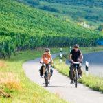 Fränkisches Weinland Tourismus/Schweinfurt 360°/Hub