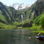 copyright: Steiermark Tourismus - Grey Wolf